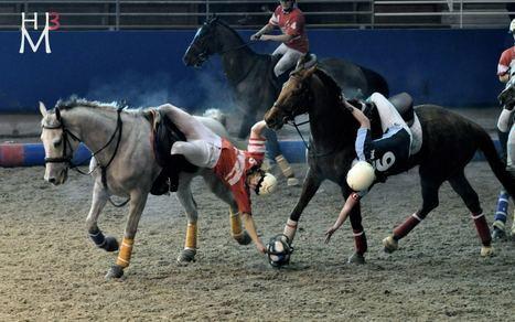 horse ball : gif et ouest hb disqualifiés   horse ball : gif et ouest hb diqualifiés   Scoop.it