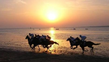 El espectáculo de las carreras de caballos en la playa de Sanlúcar | Turf | Scoop.it