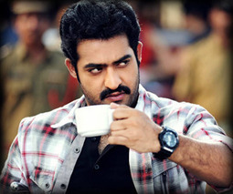 Jr NTR's project on hold   Tollywood News, Updates, Reviews   Scoop.it