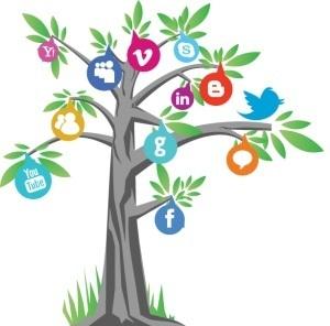 La Social Media ADV è in crescita | Social Media e Nuove Tendenze Digitali | Scoop.it