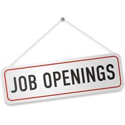 Jobs for B-Tech Fresher's In Delhi, India | Job in Delhi | Scoop.it