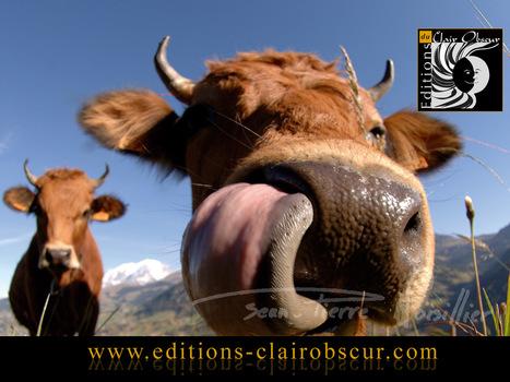 L'agriculture s'invite dans le projet de loi Montagne - Localtis.info - Caisse des Dépôts | Ecobiz tourisme - club euro alpin | Scoop.it