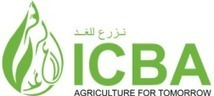 Call for Proposals – Young Arab Women in Agricultural Science | FTN press review | Scoop.it