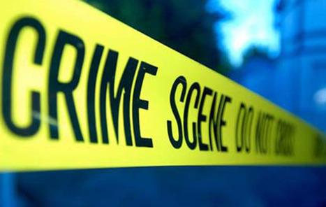 Boca Raton police seek men who robbed Fresh Market   Business News & Finance   Scoop.it