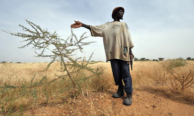 Desertification crisis affecting 168 countries worldwide, study shows | AS Global Challenges - Climate Change | Scoop.it