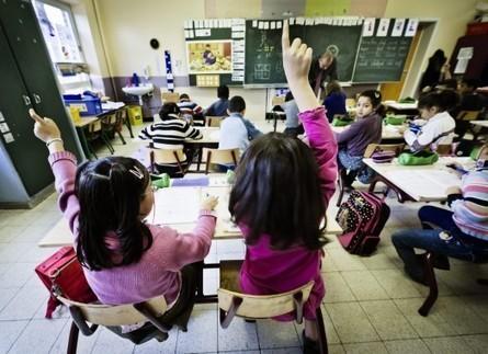 Bewijs dat je niet kansarm bent - De Standaard   Meertaligheid in het basisonderwijs   Scoop.it