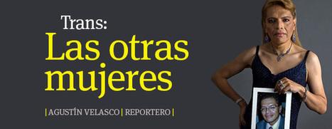 Derecho Abierto: Una condición para sociedades democráticas | Gobierno Abierto & Cñía | Scoop.it