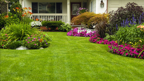 Maintain Your lawn Beautifully By Availing Cheap lawn Services In Maryland. | Jkpropertymanagement | Scoop.it