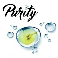 Purity D®, la solution pour des moûts assainis. | Winemak-in | Scoop.it
