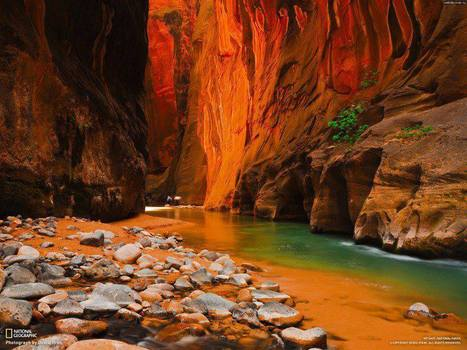 Zion National Park, USA | Combo Holidays | Scoop.it