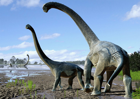 Titanic Dinosaurs Trekked Across Antarctica to Reach Australia | Biodiversity protection | Scoop.it