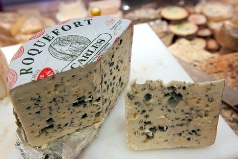 That Stinky Cheese Is a Result of Evolutionary Overdrive | Media Cultures: Microbiology in the news | Scoop.it