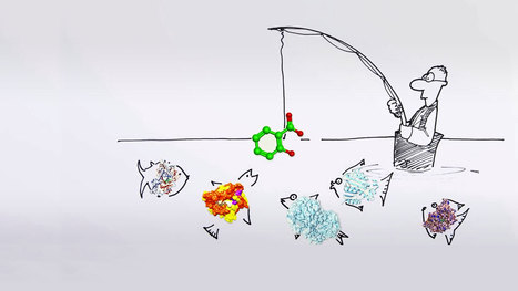 Drawn to science - Target identification in drug discovery | New Wave Drug Discovery | Scoop.it