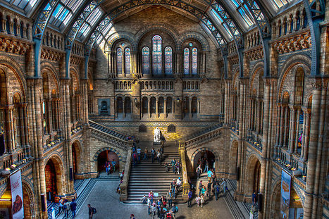 10th New Phytologist Workshop: Origin and evolution of plants and their interactions with fungi, 9–10 September 2014, Natural History Museum, London, UK | Plants and Microbes | Scoop.it
