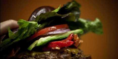 The 11 Most Destructive Nutrition Lies Ever Told | UrbanCaveNews | Scoop.it