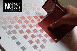 Proyectacolor | Recursos Online | Scoop.it