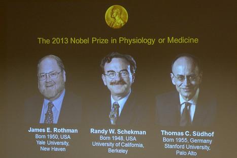 INFOGRAPHIE. Vous n'avez rien compris au prix Nobel de Médecine ? Voici ce que les lauréats ont découvert - Sciences - MYTF1News   Infographie santé   Scoop.it