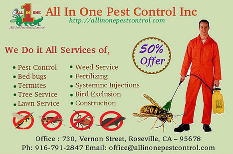 Termite and Pest Control Sacramento CA | All in One Pest Control | Scoop.it