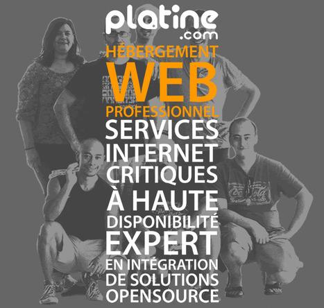 Nouvelle fin, bonne année 2014 ! | Le blog de Platine.com | Services Internet critiques | Scoop.it