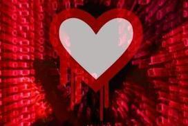 How to avoid 'Heartbleed' heartache | HeartBleed | Scoop.it