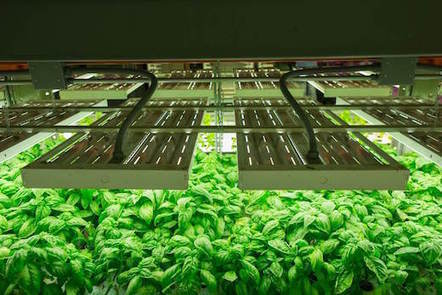 Large Vertical Farm to Open in Kentucky | Vertical Farm - Food Factory | Scoop.it