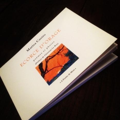 Recueils de poésie | La poésie ne meurt jamais ! | Scoop.it