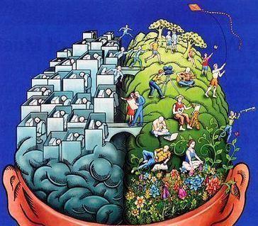 Inteligencia emocional versus coeficiente de inteligencia | EDUCACIÓN en Puerto TIC | Scoop.it