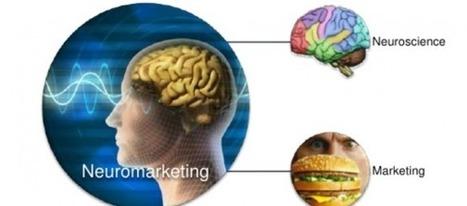 Ejemplos e importancia del Neuromarketing: entre el 80% y el 95% de la decisión de compra se toma en el inconsciente. | Neuromarketing | Scoop.it