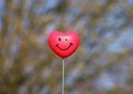 How to Create Lasting Happiness - PsychCentral.com (blog) | Happiness Life Coaching | Scoop.it