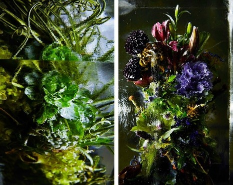 Iced Flowers: Exotic Floral Bouquets Locked in Blocks of Ice by Makoto Azuma | Victoria Florist | Scoop.it