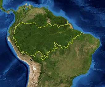 Increased deforestation could substantially reduce Amazon basin rainfall - Phys.Org | Rainforest EXPLORER:  News & Notes | Scoop.it