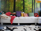 Photo Murals Expand Reality | Designing Interiors | Scoop.it