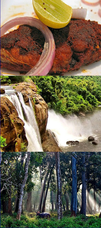 Kerala - The World's Top 10 Best Destination for Family Holiday | Travel - Places, Destinations, Vacations | Scoop.it