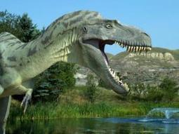 T. rex has most powerful bite of any terrestrial animal ever | Science and Nature | Scoop.it