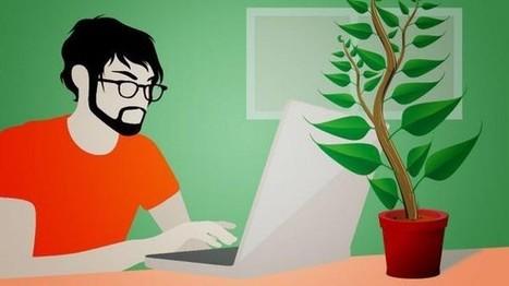 The Perks Of Hiring A Freelance Software Developer | Dmitry Khodarenok Software Developer | Scoop.it