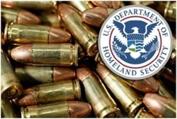Has the Dept. of Homeland Security Become America's Standing Army?   The American Empire   Scoop.it