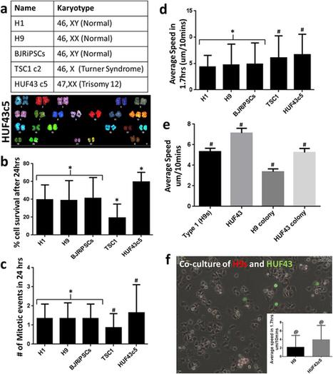 Dynamic and social behaviors of human pluripotent stem cells : Scientific Reports   滴酒餓餓實驗室   Scoop.it