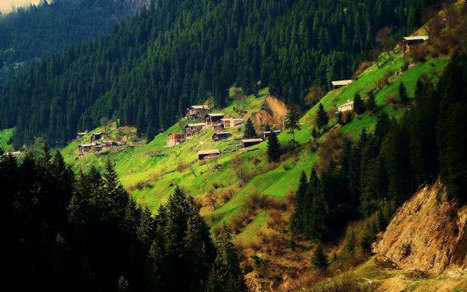 """Yayla"" mon amour... 