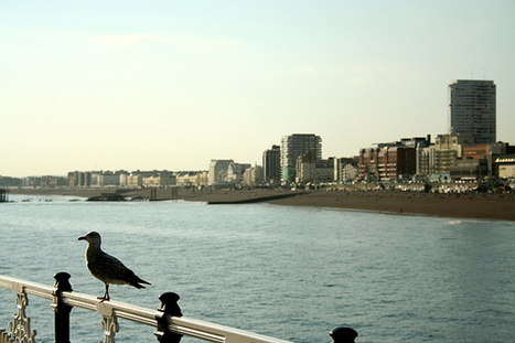 The most romantic weekend in Brighton | Travel, places and beautiful sites to visit | Scoop.it
