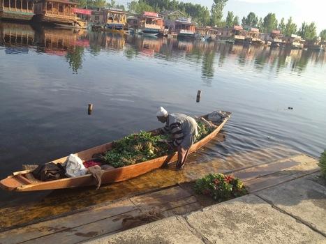 My visit to Kashmir | Jammu Kashmir India | Scoop.it