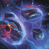 Crop Genomics, NGS and Bioinformatics