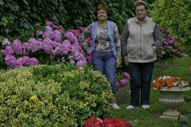 Concours de fleurissement | Professionnels du tourisme - Nogaro en Armagnac | Scoop.it
