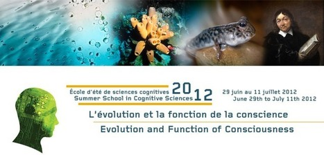 Turing Evolution of Consciousness | Philosophy and Science of Mind and Brain | Scoop.it