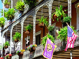 The Greener Side of New Orleans | ECONOMIES LOCALES VIVANTES | Scoop.it