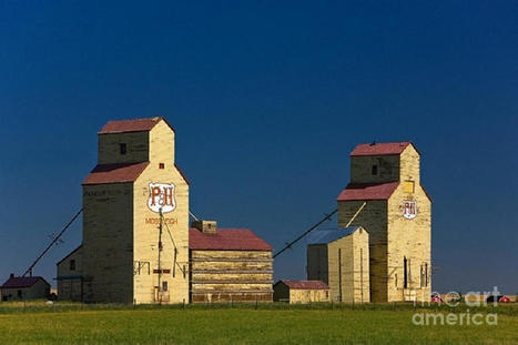 Canada: Grain Elevators at Mosleigh, Alberta - artworks by Rod Jellison | Grain Elevators | Scoop.it
