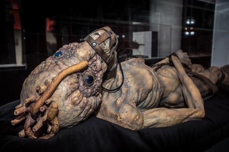 20 eerie photos of the new David Cronenberg exhibit - blogTO (blog)   'Cosmopolis' - 'Maps to the Stars'   Scoop.it