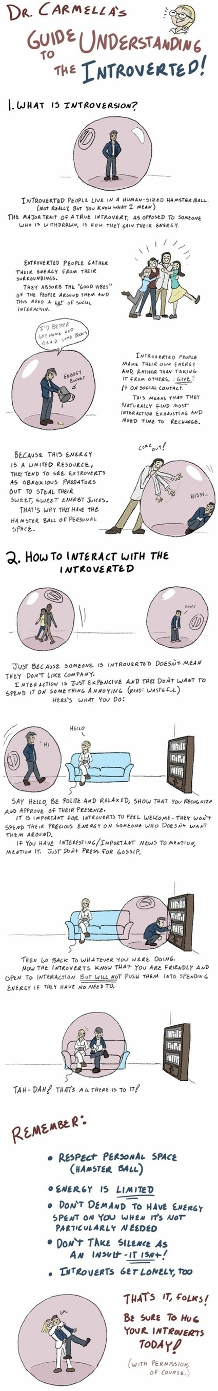 A Guide to Understanding Introverts. | Daily Magazine | Scoop.it