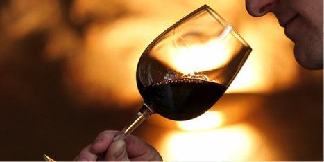 L'international présentent les meilleures perspectives de croissance à l'avenir pour les vins du Beaujolais.   Vos Clés de la Cave   Scoop.it