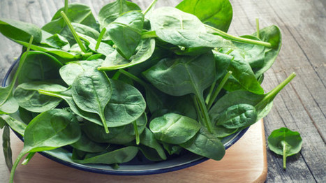 Popeye was right: Could nitrate-rich spinach enhance strength & fitness? | Erba Volant - Applied Plant Science | Scoop.it