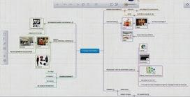 Développer le travail collaboratif dans et hors la classe avec l'application web de mindmapping Mind42 | Carte heuristique-carte mentale | Scoop.it